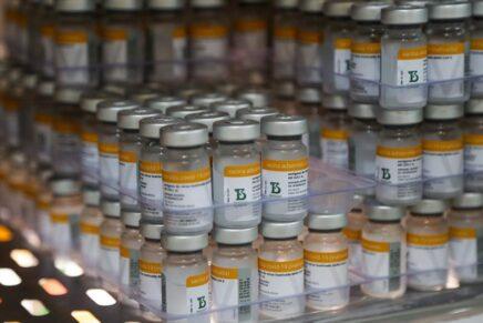 Número de pessoas vacinadas contra a Covid-19 chega a 481.019 para a primeira dose